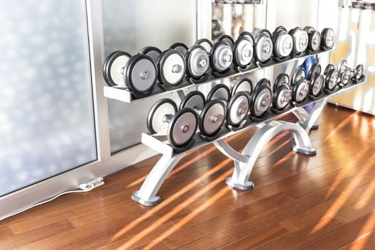 fitness studio dumbbell rack manufacturer