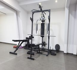 home gym exercise station