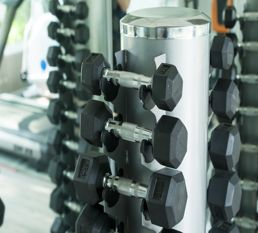 X shaped dumbell rack manufacturer